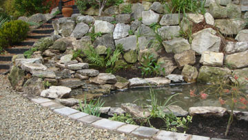 Pond gallery for Koi pond size requirements